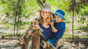 Zoo guests enjoying visit